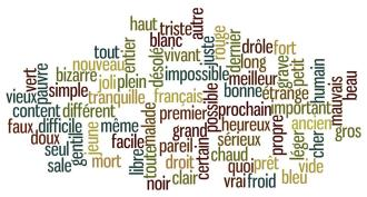 adjectifs-courants