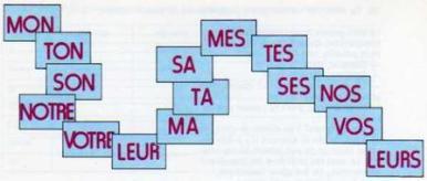grammaire_adjectifs_possessifs