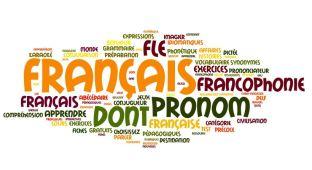 le_pronom_bonjour_de_france