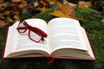 book-2875123_960_720