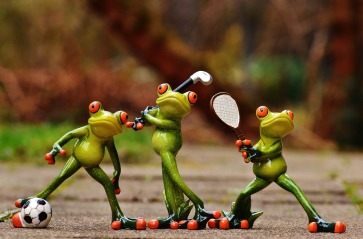 frogs-1212209_1920